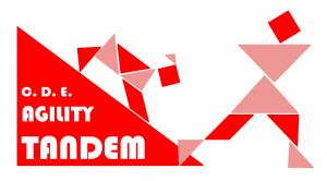 logo AgilityTandem